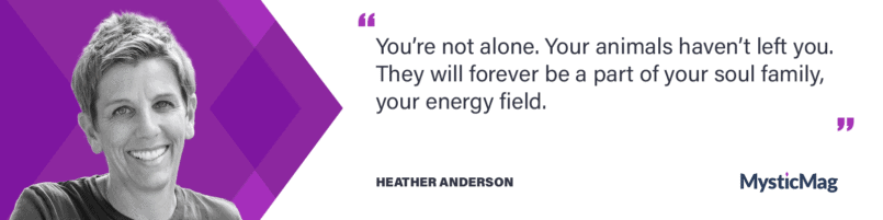 Interview with Heather Anderson - a Psychic specialized in communicating with animals