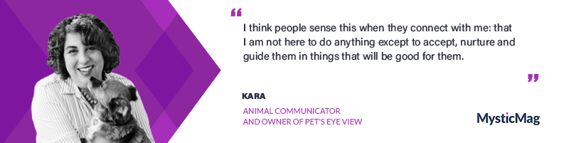 Interview with Kara from Pet's Eye View